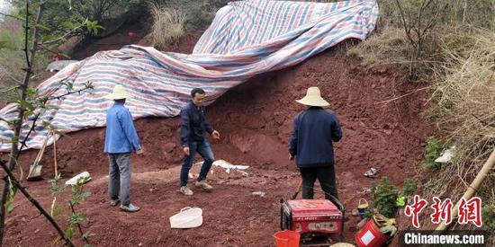 图为恐龙化石发掘现场。 禄丰市恐龙化石保护研究中心 供图