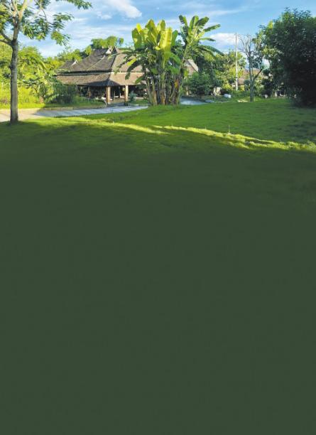 勐罕镇曼远村