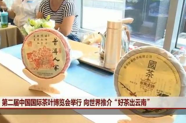 视频丨第二届茶博会 云南好茶推向世界