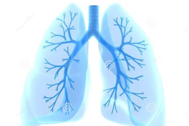"""健康丨你的肺还好吗几个妙招教你给肺""""洗洗澡"""""""