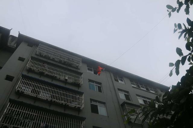 云南景东消防帮小区居民清除蜂患