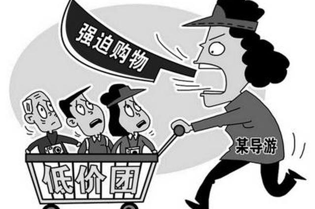 云南一导游强迫游客消费获刑6个月