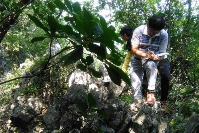 建水县国土资源局邀请地灾专家深入盘江乡核实地质灾害隐患