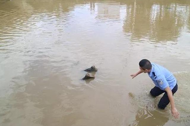 """河里有""""浮尸""""?民警追了几百米 发现是件连体雨靴"""