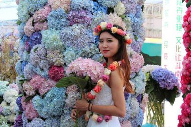 种菜赏花 昆明农博会将于10月11日至15日举办