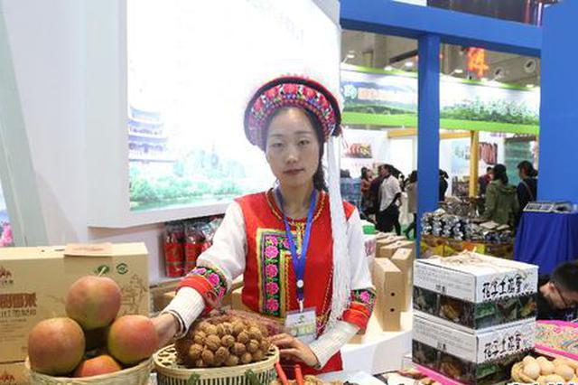 组图|第十四届中国昆明国际农业博览会11日开幕