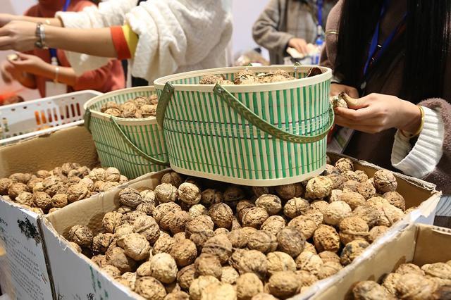云南:坚果产业发展商务洽谈暨合作签约仪式举行