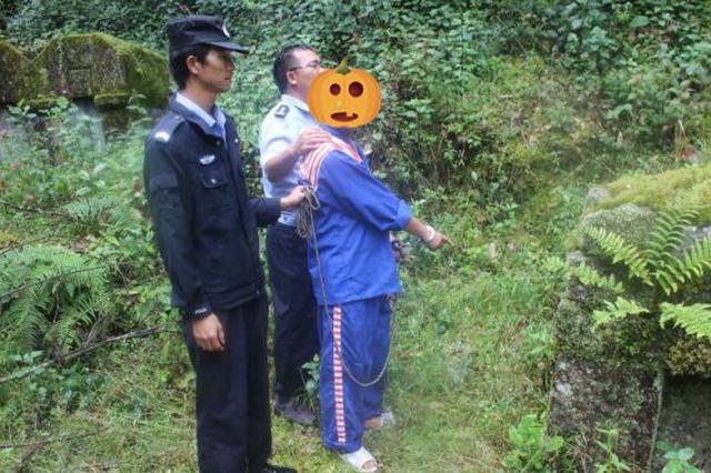 云南昌宁43冢古墓被盗 4主犯被判10-12年不等徒刑