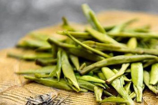 云品丨2022年云南有机茶园面积要达全国第一