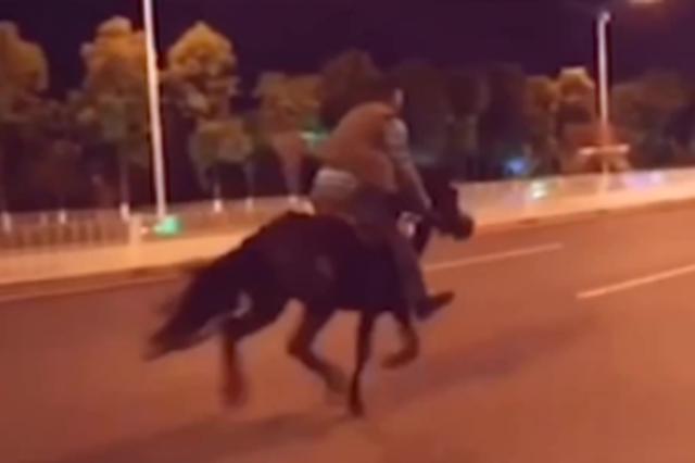 视频|太狂野!男子昆明街头纵马狂奔