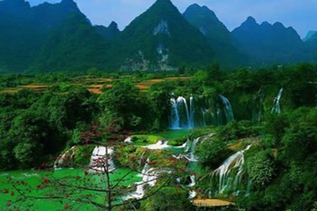 云南力争到2020年全省森林覆盖率达61%以上