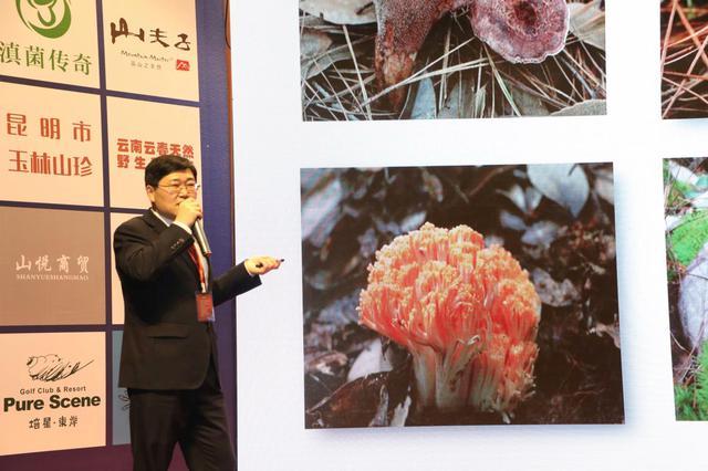 首届国际(云南)食用菌产业发展战略论坛在昆明举行