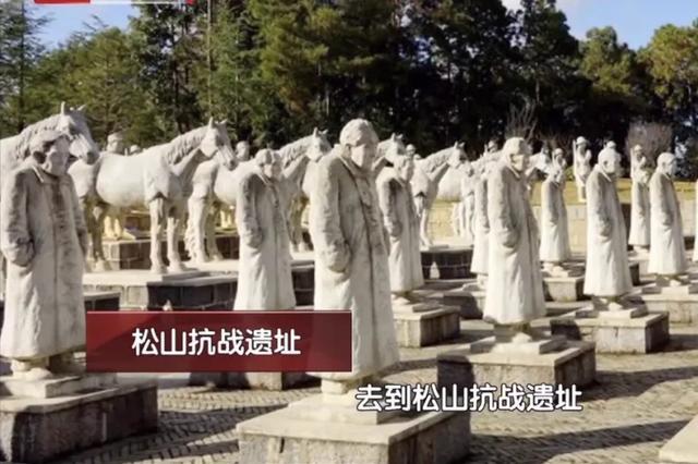 """段林希北京卫视讲述""""松山战役""""背后的故事"""