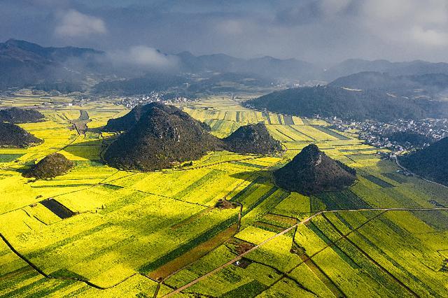 喀斯特地貌上的罗平油菜花田晨雾缭绕,宛如一幅油画。新华网发 鲍禹 摄