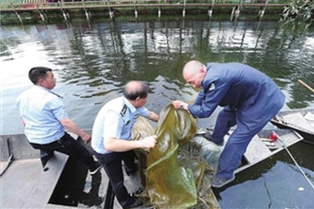"""滇池志愿者在行动 热心市民船房河发现3个长""""地笼"""""""