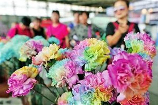 云品丨第二十届中国昆明国际花卉展12日至14日举办