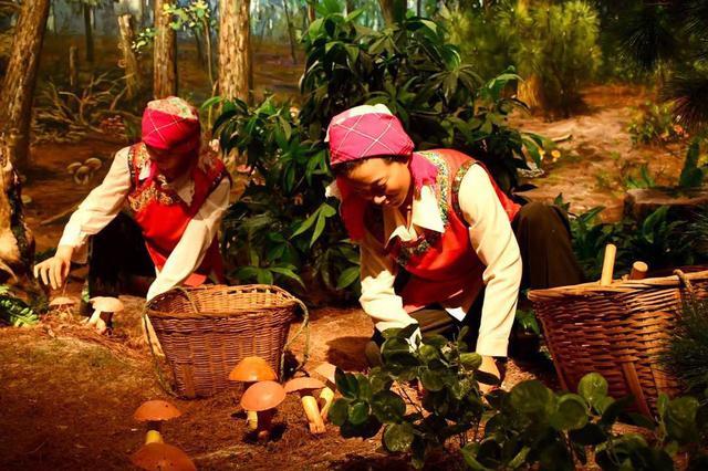 云品丨第十五届云南野生菌交易会将于20日在易门举办