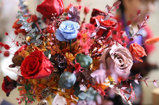 云花绽放 第二十届中国昆明国际花卉展飘香春城