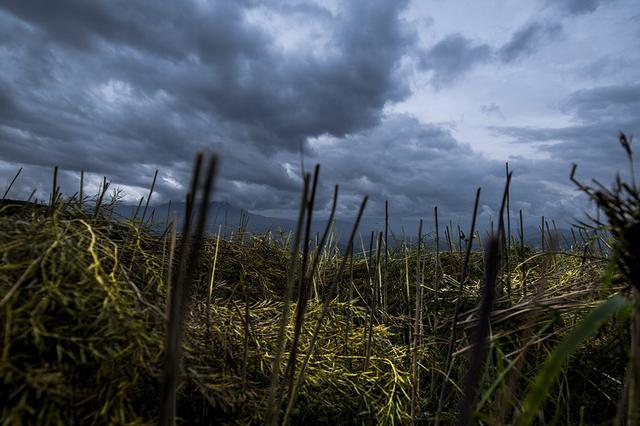 云南多地今天仍有雨 需注意防范地质灾害
