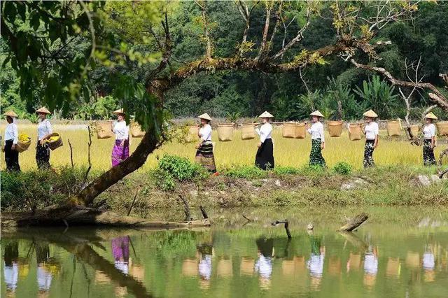 云南临沧:示范引领 打造乡村旅游特色品牌