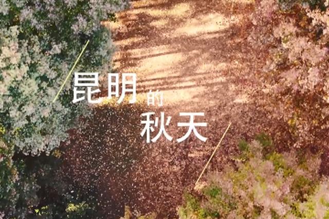 视频丨航拍昆明秋景 探寻城市绝美好风光