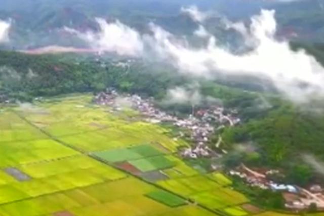 央视一套《大美中国》编排 邀你欣赏茶都普洱