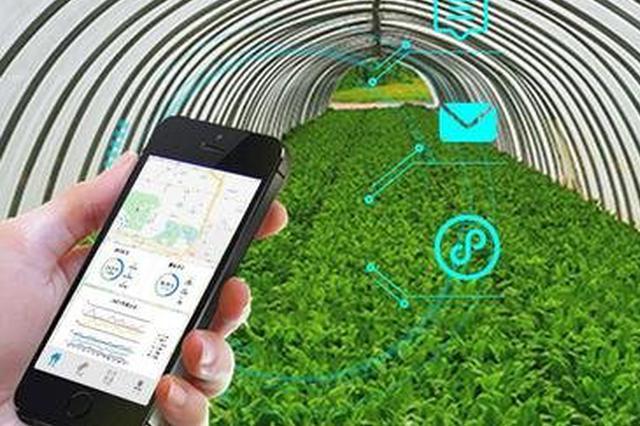 提升气象现代化水平 云南将推进发展智慧农业气象服务