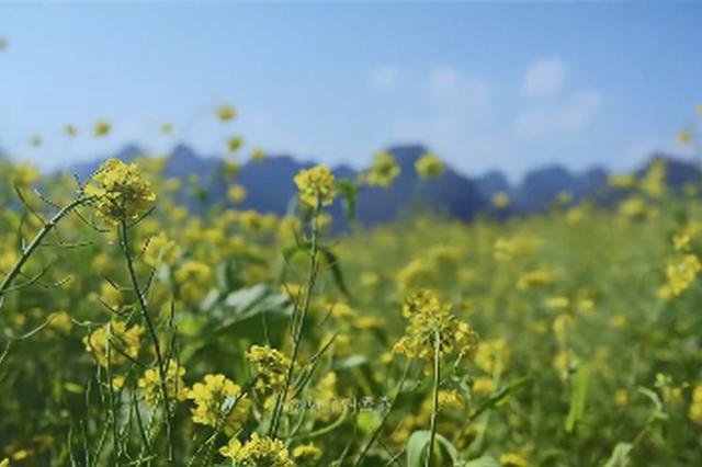 视频丨云贵高原风光延时摄影 带你看不一样的彩云南