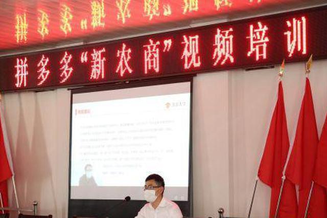 云品丨拼多多与勐海县签署战略合作协议 共推农货上行