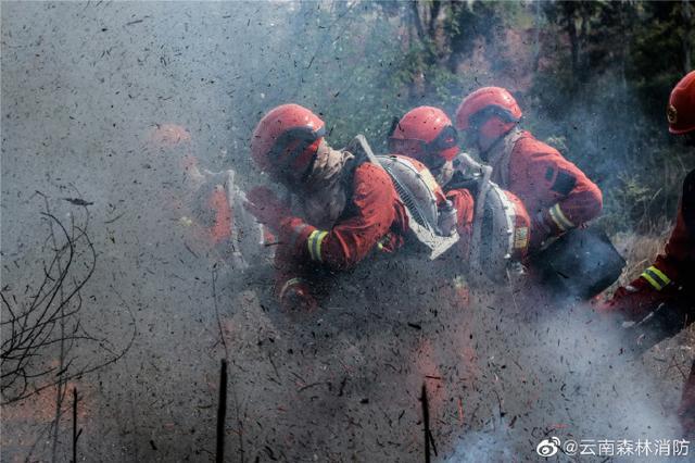 """云岭新消防员实战训练上演真实版""""烈火英雄"""""""