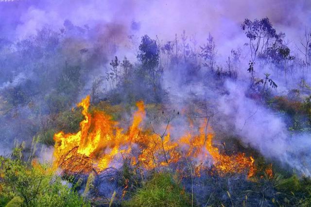 云南大理鹤庆森林火灾明火已被扑灭 因电焊施工引起