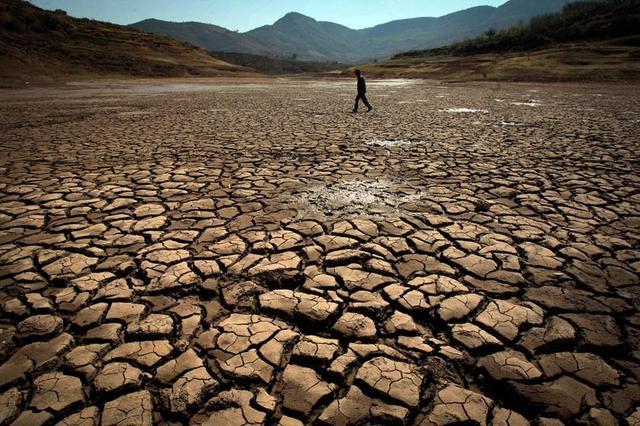 两部门下拨6000万元救灾资金 支持云南旱灾群众生活