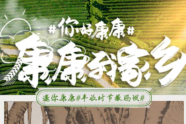 康康放映厅丨云南红河县:幸福都是奋斗出来的 撒玛坝喜迎丰收