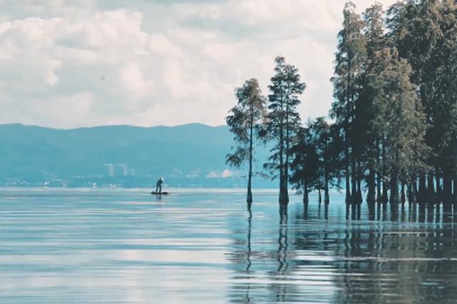 """视频丨大理:一半山野、一半世界的""""诗和远方"""""""