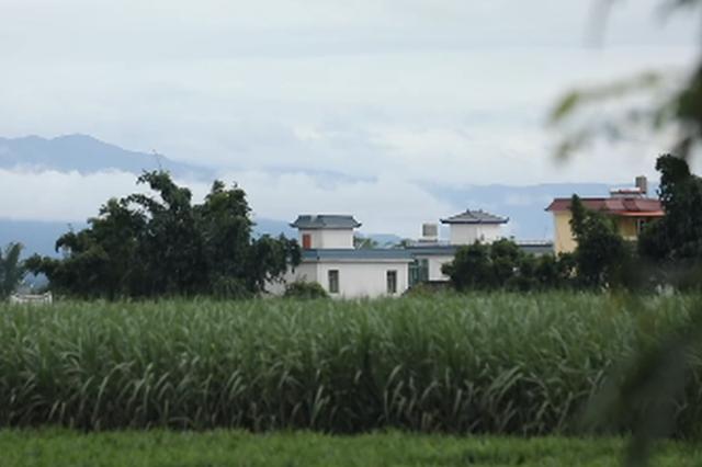 旅游丨来云南:体验从盐马古道到绿叶盛宴的惬意旅程