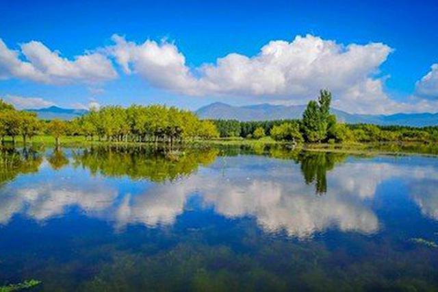 旅游丨云南剑川:剑湖湿地进入冬季最佳观鸟时间