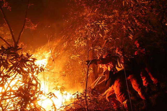 迪庆礼仁村12.28森林火灾仍在扑救中