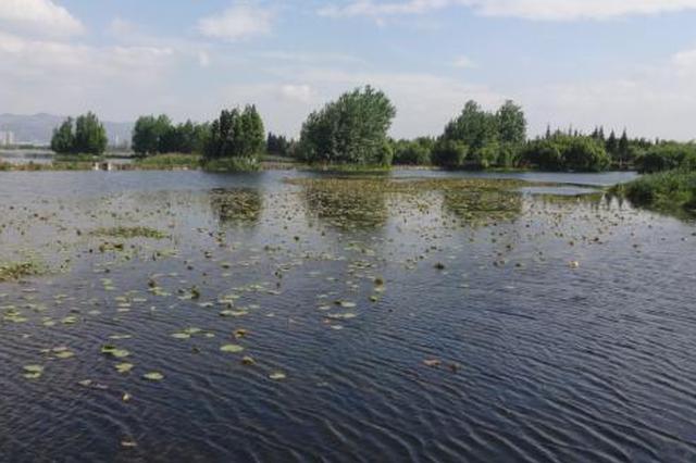 """守护昆明""""母亲湖""""!云南滇池连续三年保持Ⅳ类水质"""