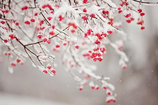 最低温-1℃!昆明局部地区将出现雨夹雪或小雪天气