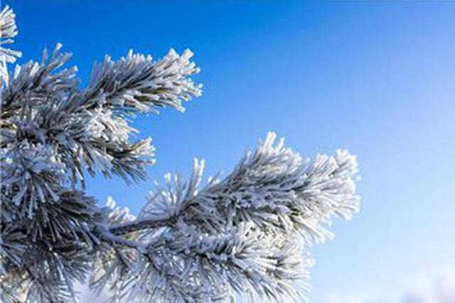 旅游丨云南多地现雾凇景观 冬天原来也很美