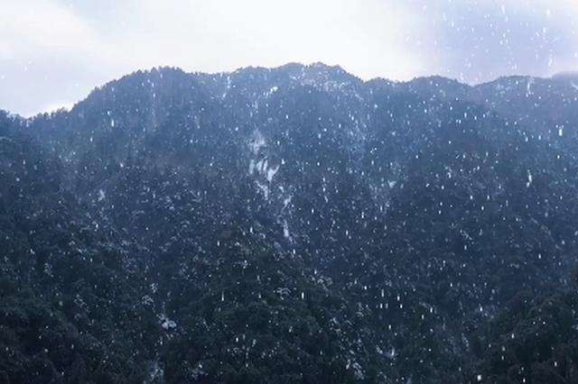 視頻丨雪落騰沖滇灘青草嶺,遇見2021第一場雪