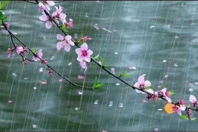 春雨貴如油!受南支槽影響,云南多地將迎來降雨