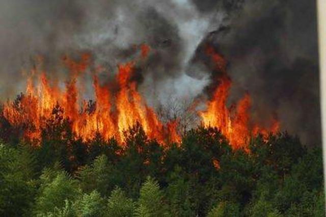 最近进展!昆明森林火灾北线南线仍有2处较大火点!已出动791