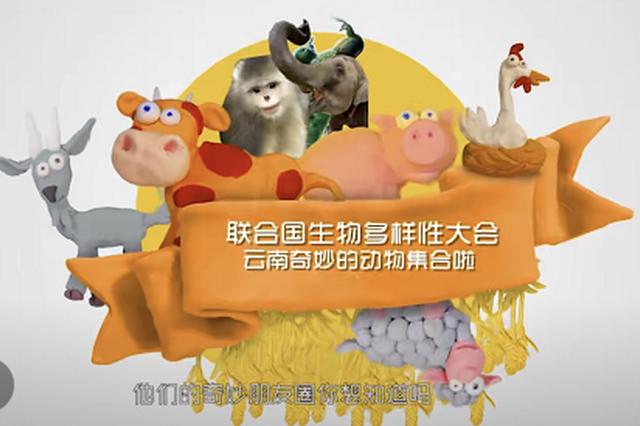 联合国生物多样性大会Rap篇丨奇妙动物在哪里,当然是云南喽!