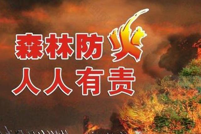 发生森林草原火灾如何应对?云南发布应急预案作指导