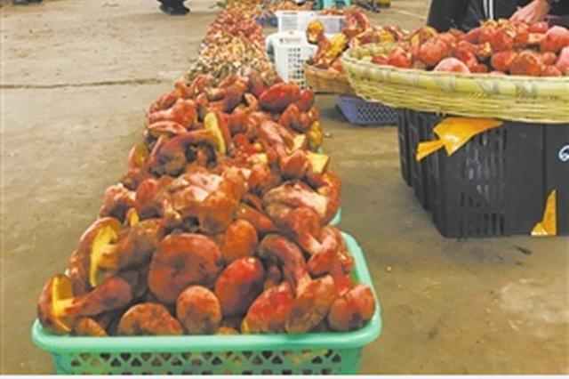 云南木水花野生菌交易市场 部分野生菌价格每公斤跌破百元