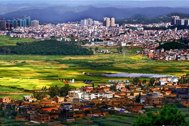 云南泸西:蔬菜总产量位居全省第一 从农业大县向农业强县转变