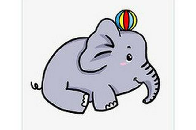 云南歌手土土为大象创作摇篮曲《胖宝宝》