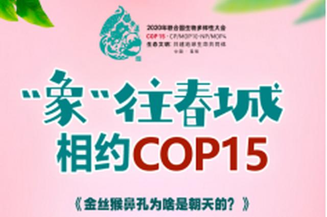 """[""""象""""往春城 相约COP15] 金丝猴鼻孔为啥是朝天的?"""