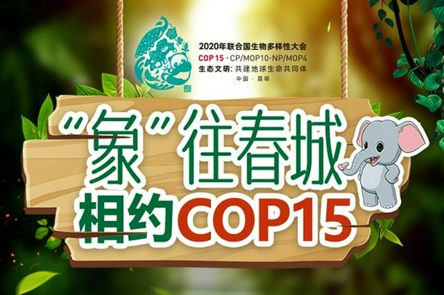 """[""""象""""往春城 相约COP15] 哈尼人在唐代就创造了梯田"""